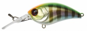 MUSH BOB MR 5cm HL VISIBLE PERCH